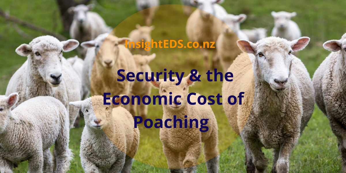 Security & the Economic Cost of Poaching