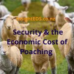 Security and the Economic Cost of Poaching